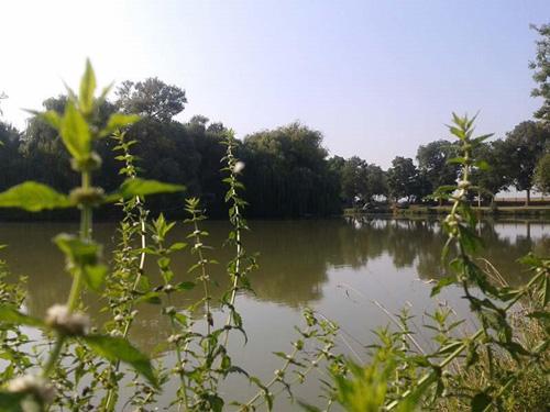 Activite no kill en Charente Maritime
