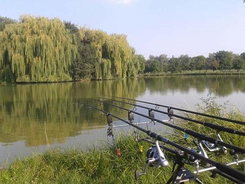 Etang pêche